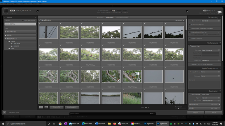 How to Download the Adobe Photoshop Lightroom App for Free - Enhance Photos, Make 3D Illustrations and More
